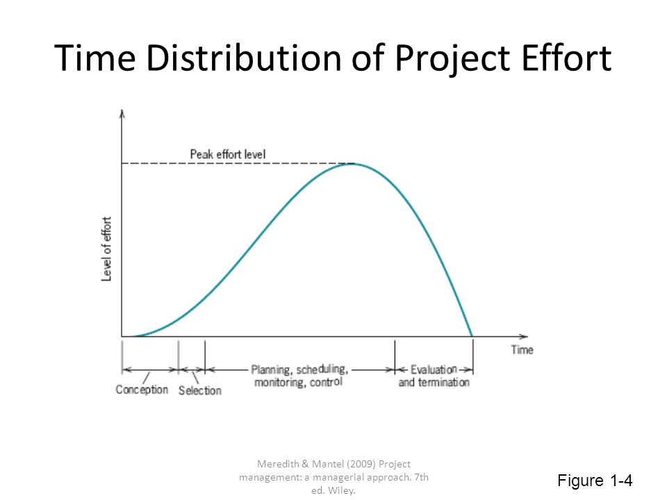 Time Distribution of Project Effort