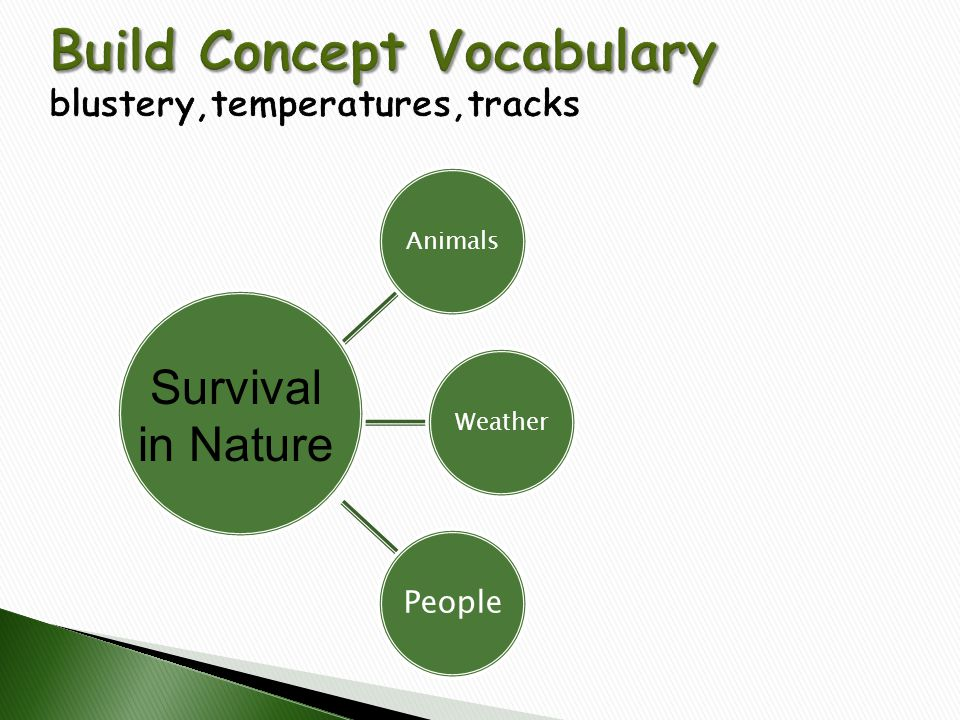 Build Concept Vocabulary blustery,temperatures,tracks