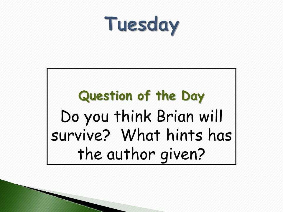 Do you think Brian will survive What hints has the author given