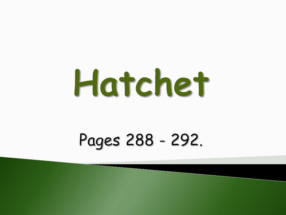 Hatchet Pages 288 - 292.