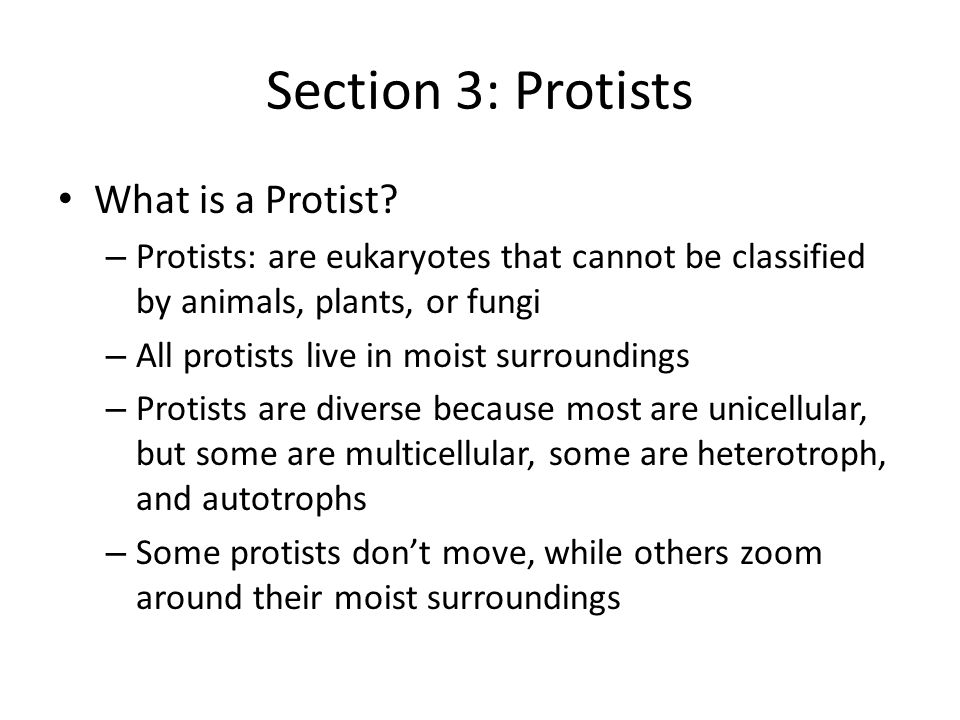 Section 3: Protists What is a Protist