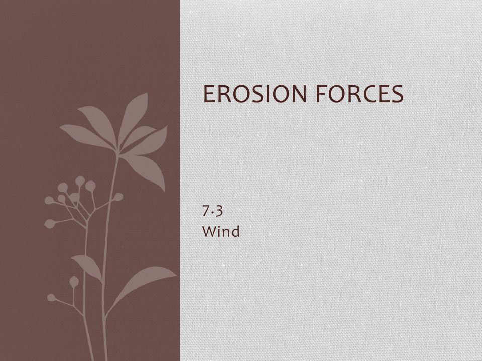 Erosion Forces 7.3 Wind