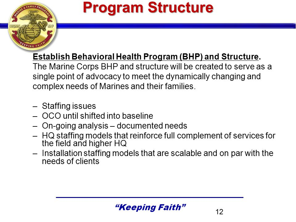 Program Structure Establish Behavioral Health Program (BHP) and Structure. The Marine Corps BHP and structure will be created to serve as a.