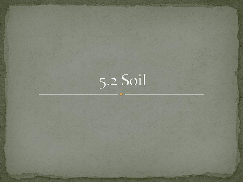 5.2 Soil