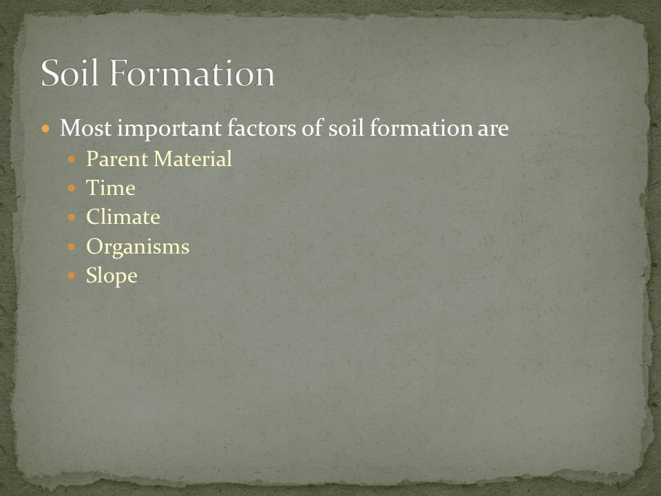 Soil Formation Most important factors of soil formation are