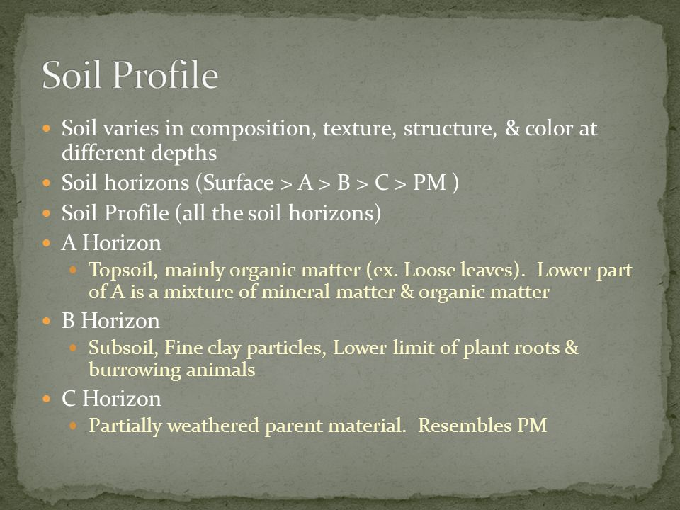 Soil Profile Soil varies in composition, texture, structure, & color at different depths. Soil horizons (Surface > A > B > C > PM )