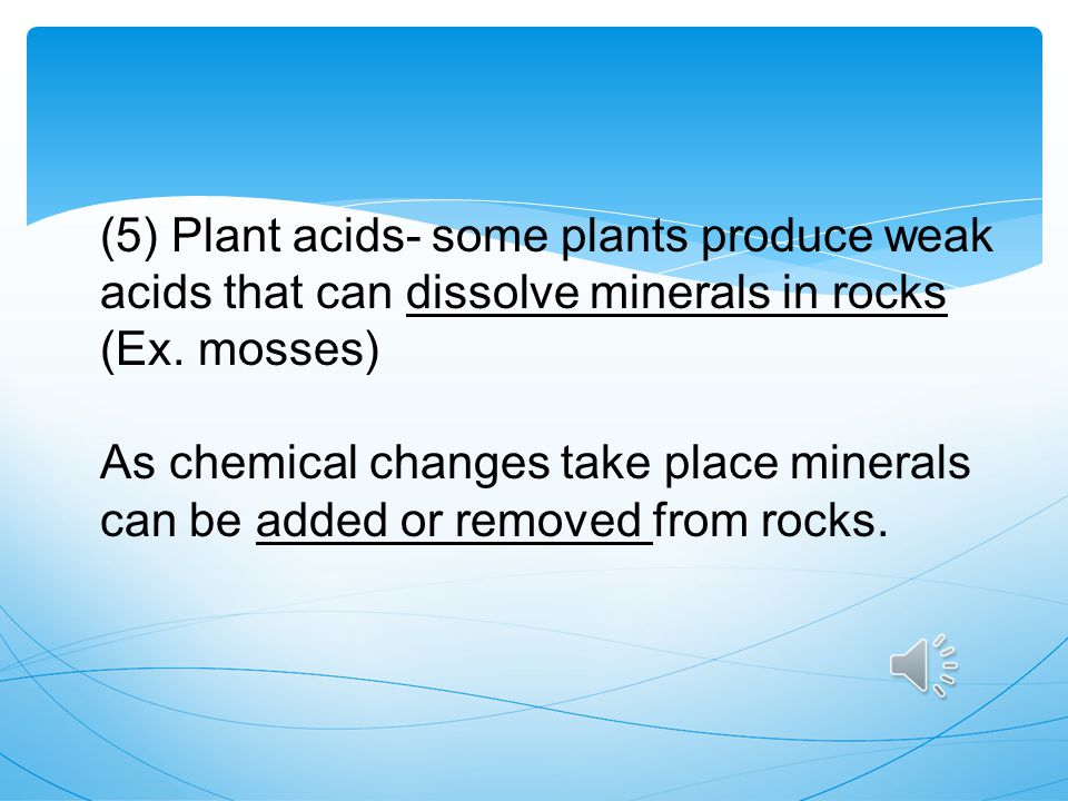 (5) Plant acids- some plants produce weak acids that can dissolve minerals in rocks (Ex. mosses)