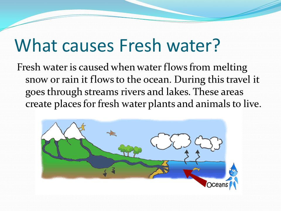 What causes Fresh water