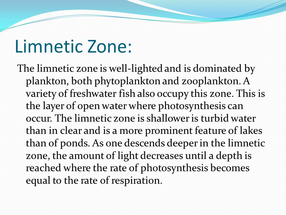 Limnetic Zone: