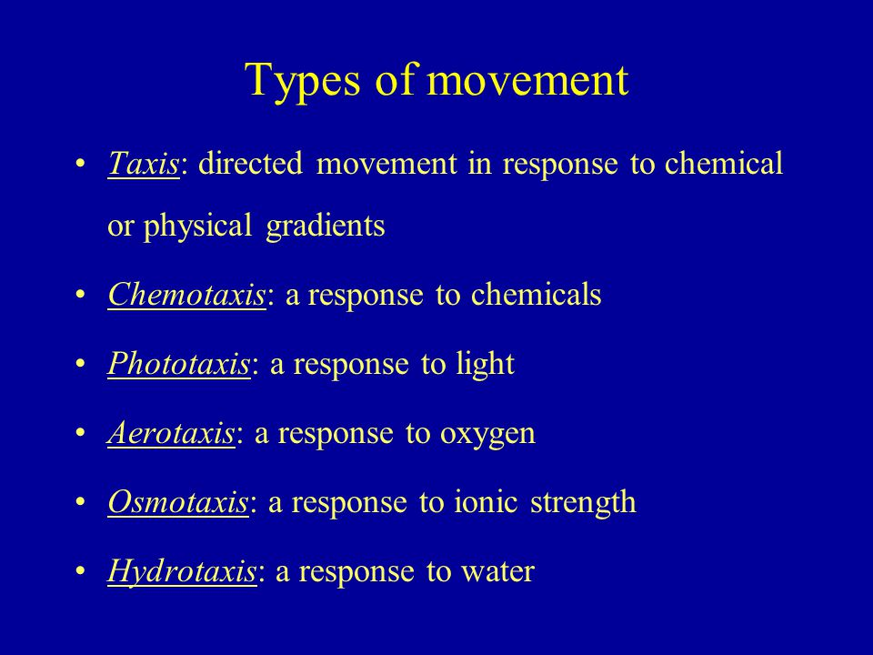 Types of movement Taxis: directed movement in response to chemical or physical gradients. Chemotaxis: a response to chemicals.