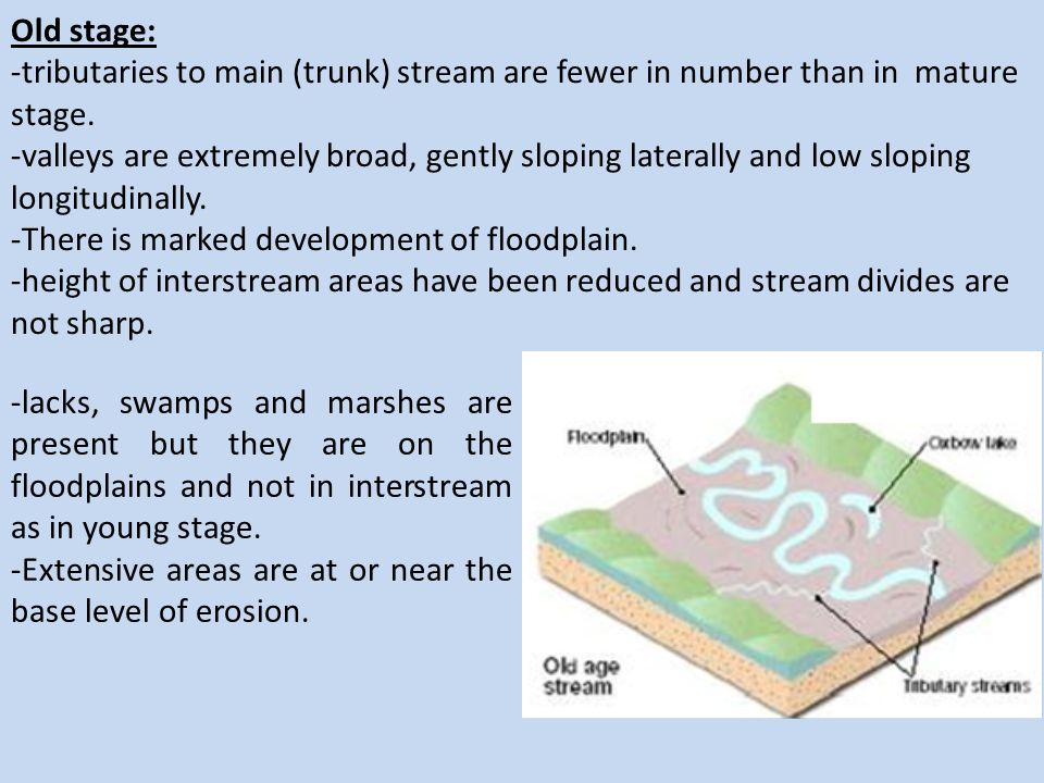 Old stage: -tributaries to main (trunk) stream are fewer in number than in mature stage.