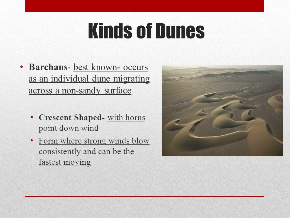 Kinds of Dunes Barchans- best known- occurs as an individual dune migrating across a non-sandy surface.