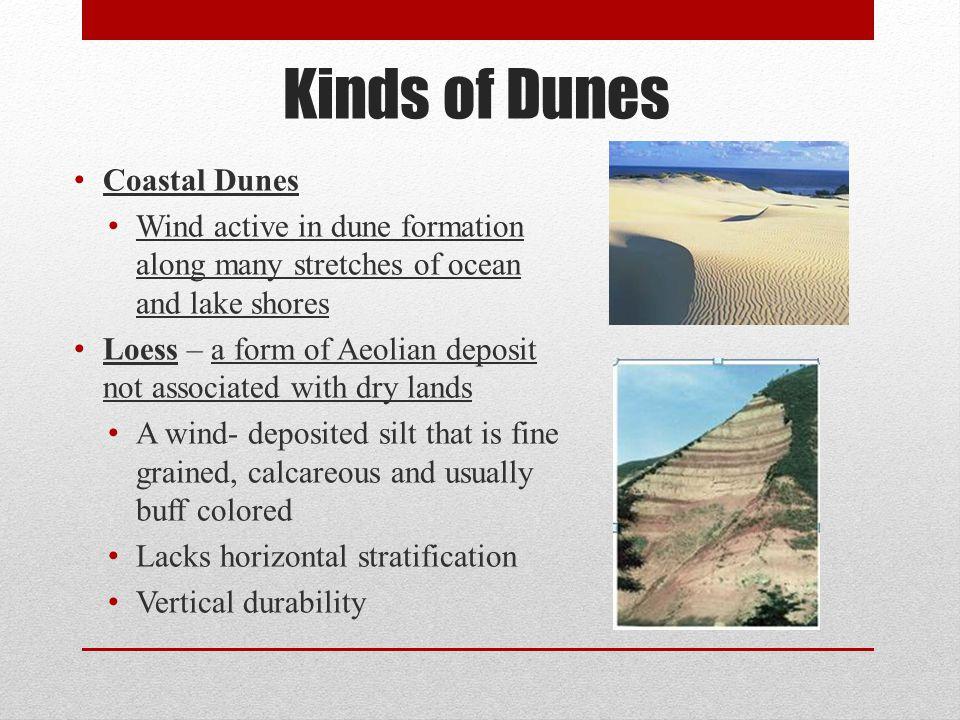 Kinds of Dunes Coastal Dunes