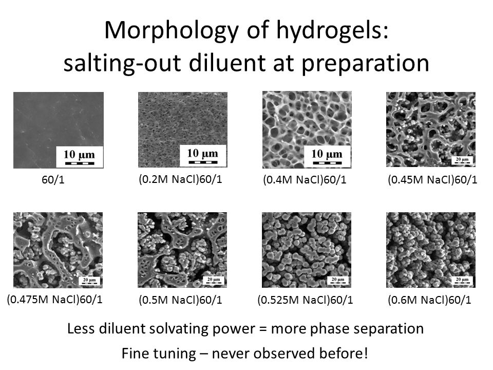 Morphology of hydrogels: salting-out diluent at preparation