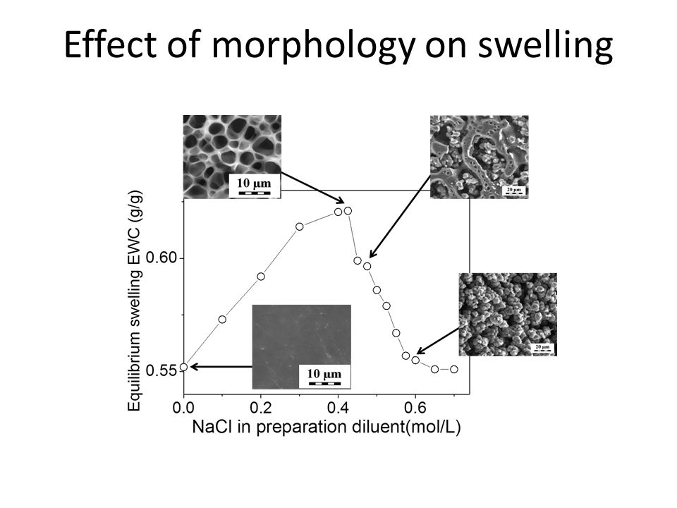 Effect of morphology on swelling