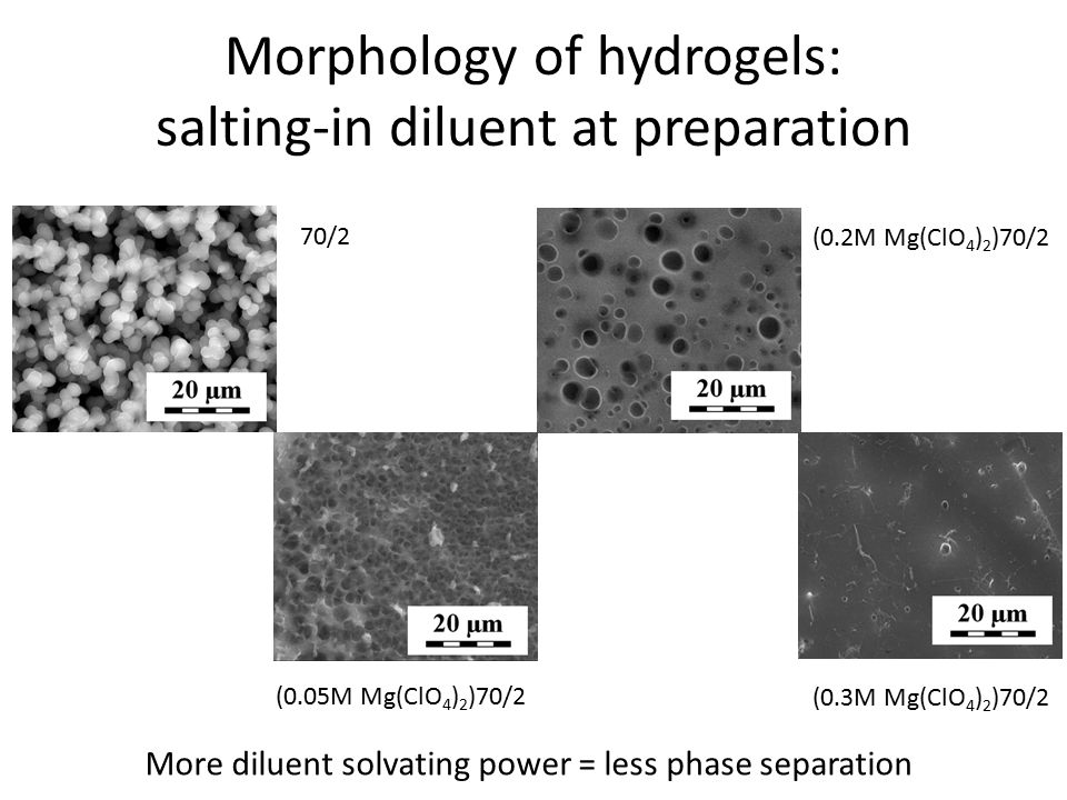 Morphology of hydrogels: salting-in diluent at preparation