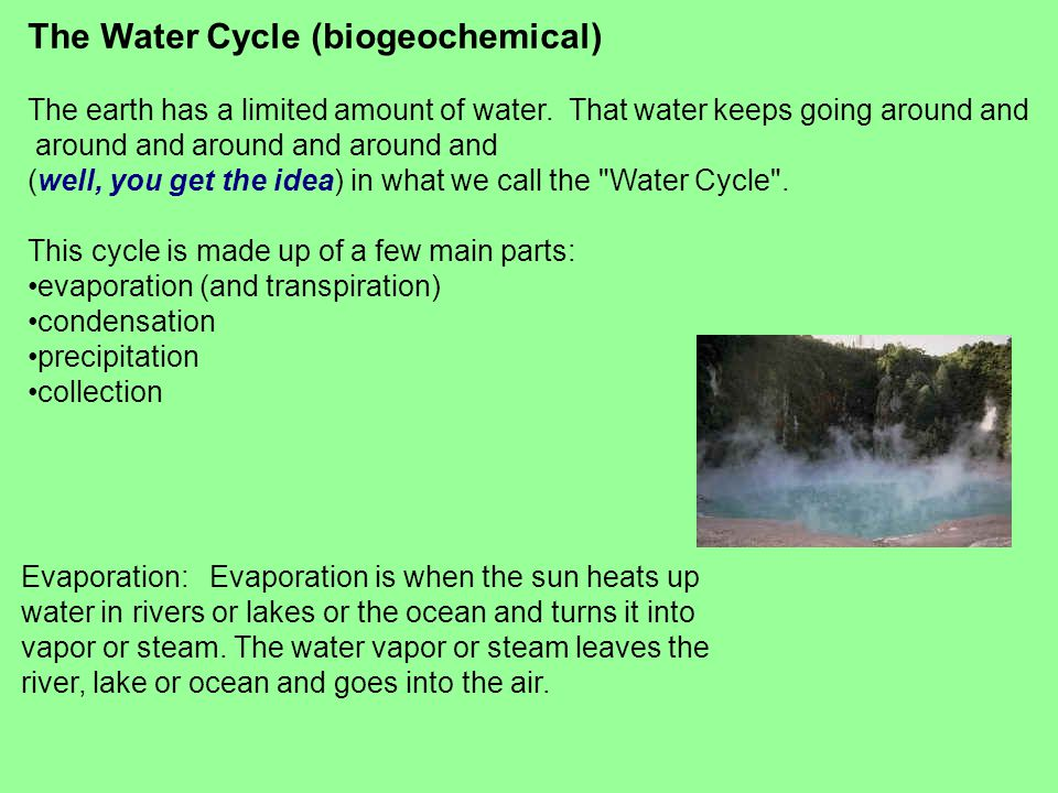 The Water Cycle (biogeochemical)