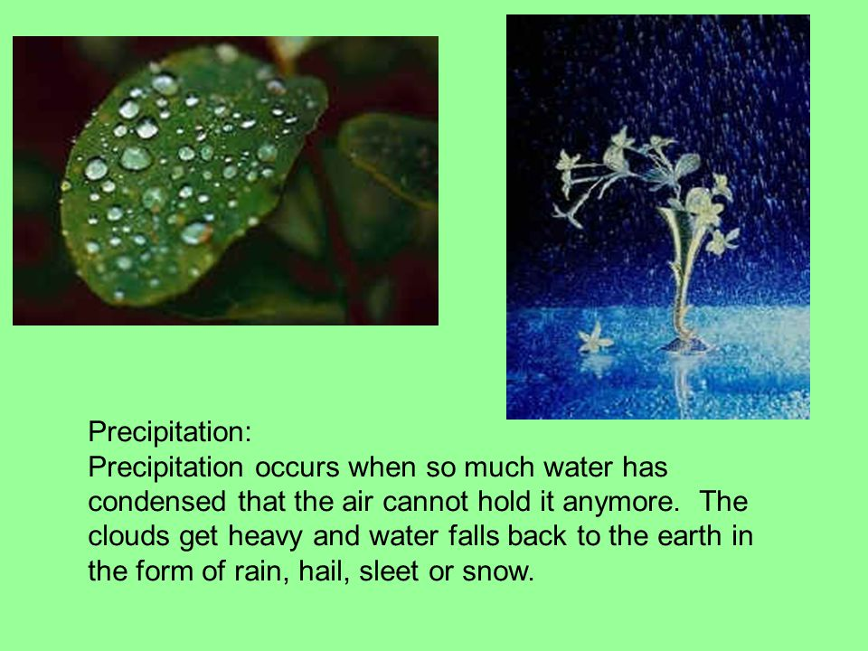 Precipitation: