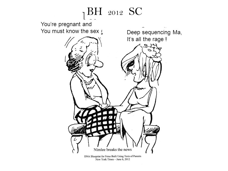 BH 2012 SC You're pregnant and You must know the sex