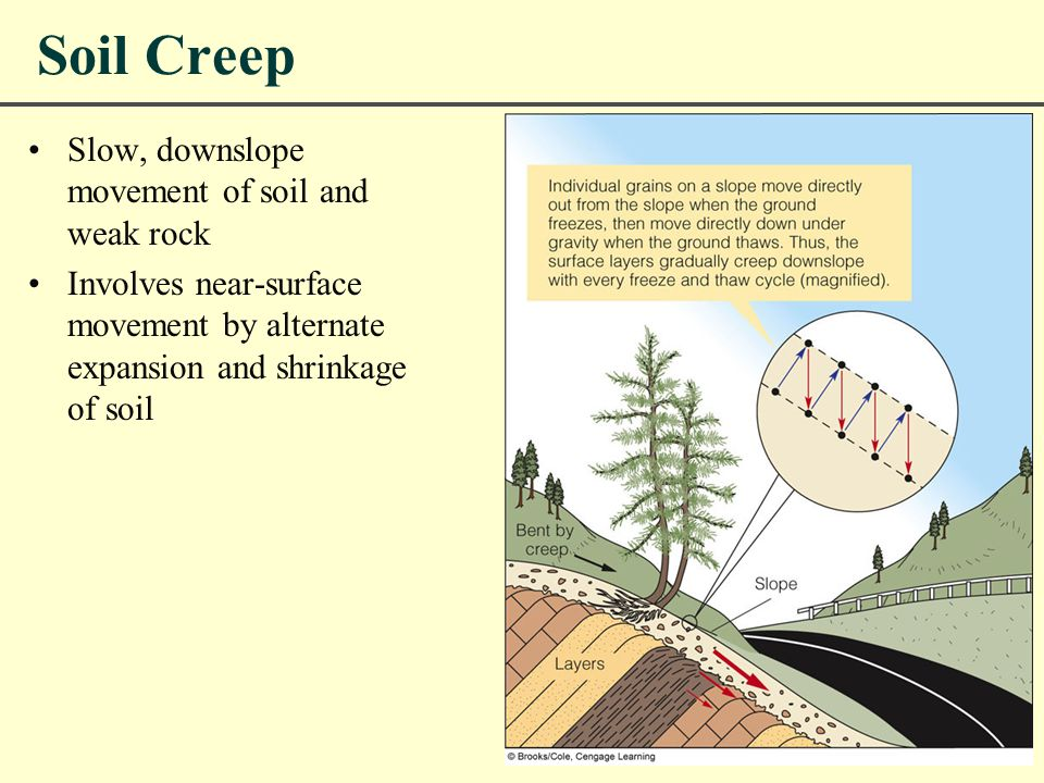 Soil Creep Slow, downslope movement of soil and weak rock