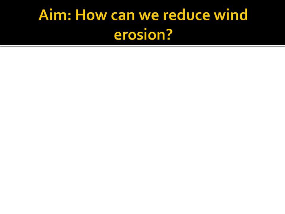 Aim: How can we reduce wind erosion