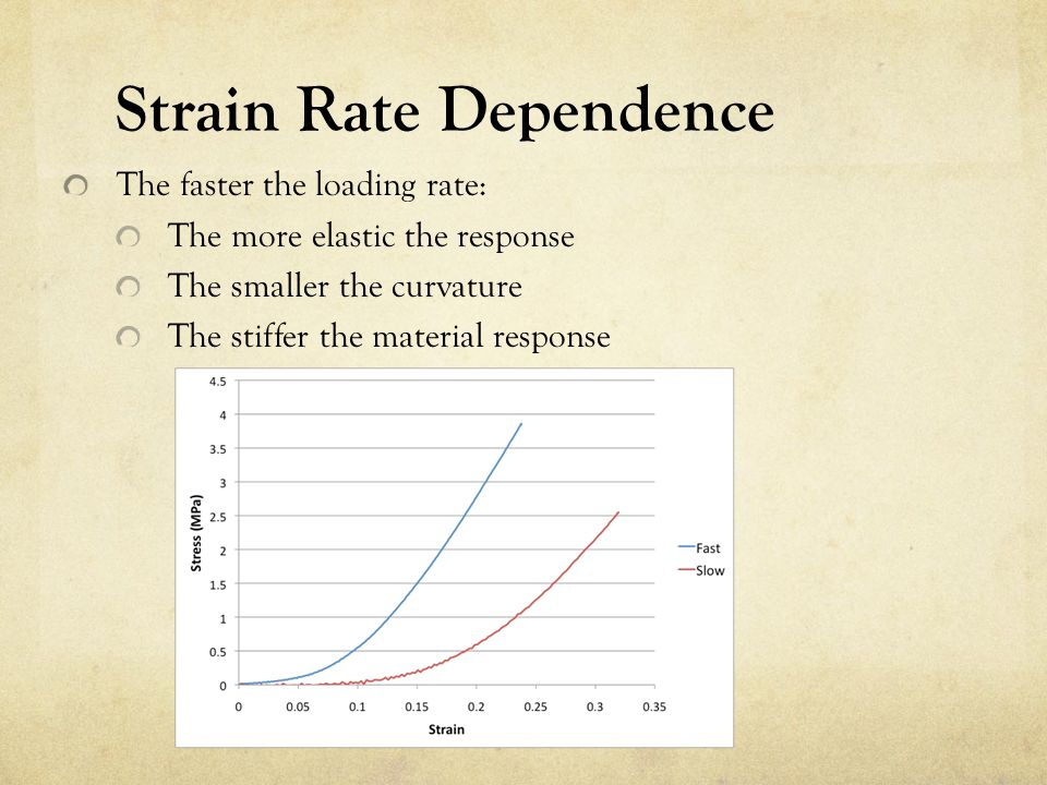 Strain Rate Dependence