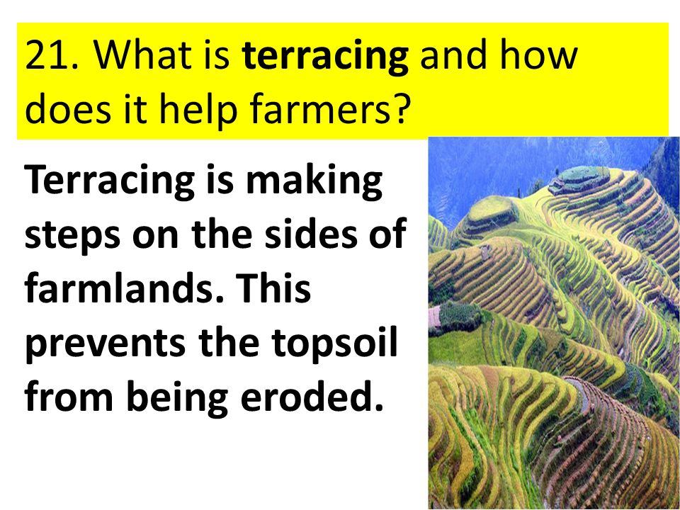 21. What is terracing and how does it help farmers