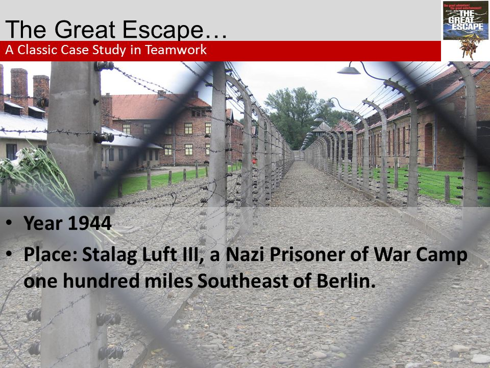 The Great Escape… A Classic Case Study in Teamwork. Year 1944.