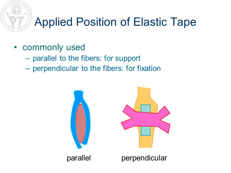 Applied Position of Elastic Tape