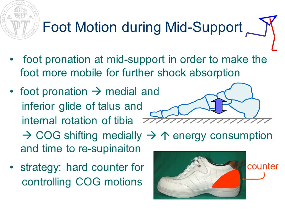 Foot Motion during Mid-Support