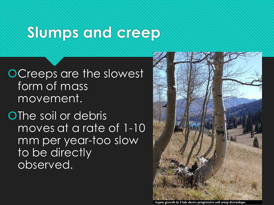 Slumps and creep Creeps are the slowest form of mass movement.