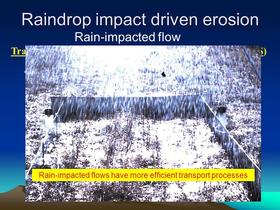 Raindrop impact driven erosion