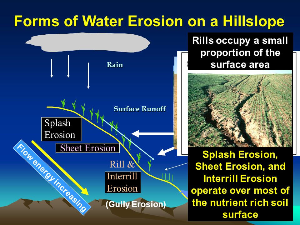 Forms of Water Erosion on a Hillslope