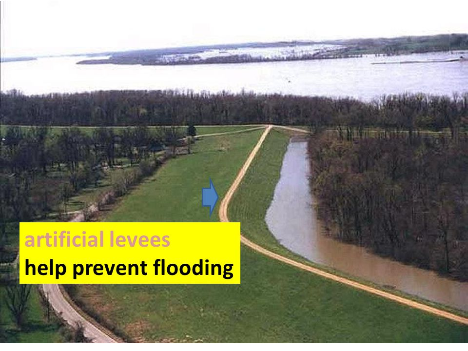 artificial levees help prevent flooding