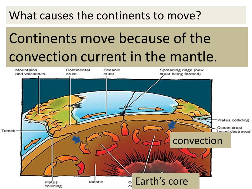 Continents move because of the convection current in the mantle.