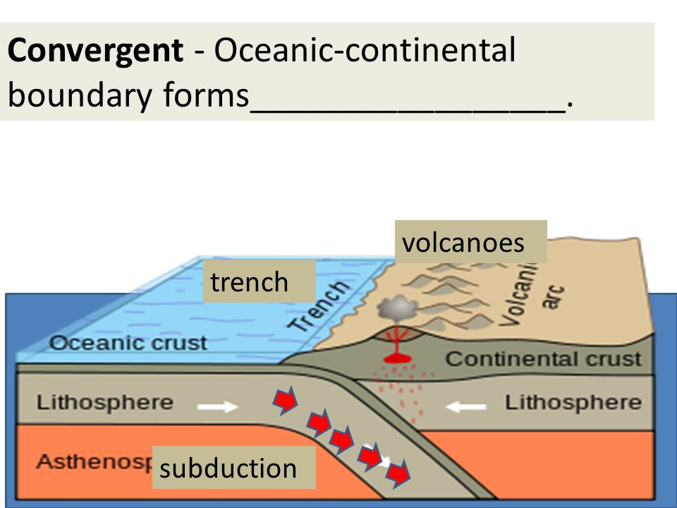 Convergent - Oceanic-continental boundary forms_________________.