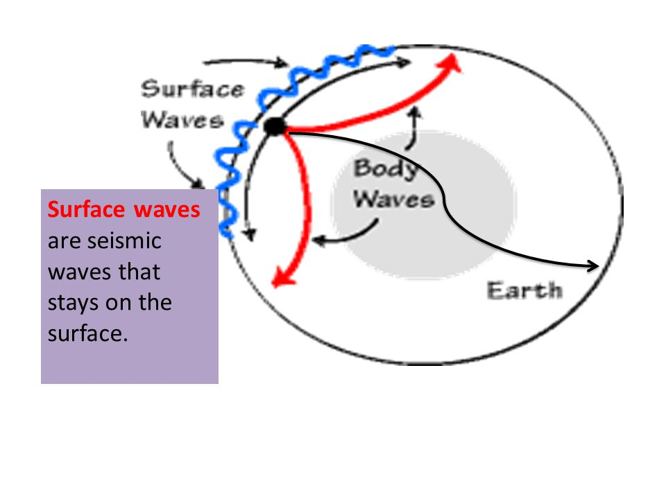 are seismic waves that stays on the surface.