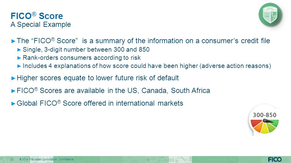 FICO® Score A Special Example