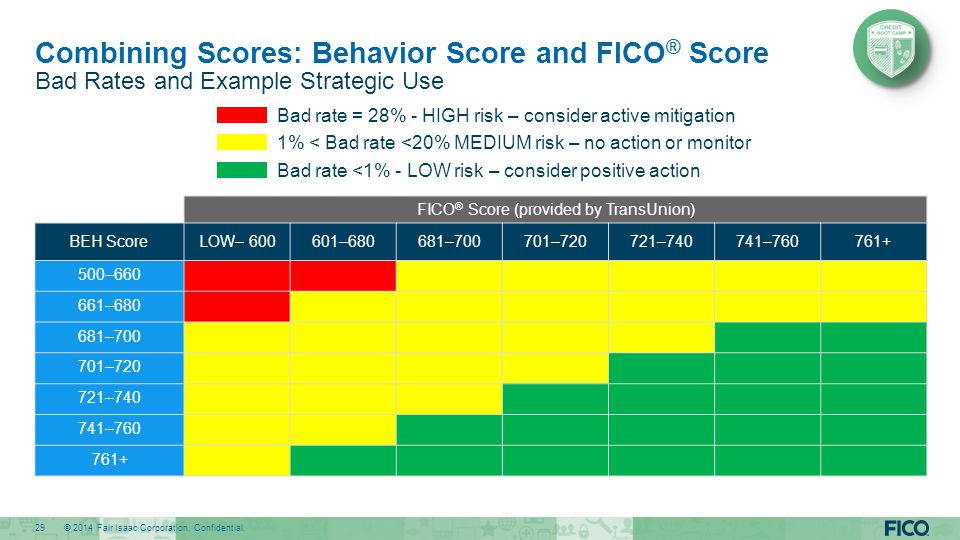 Combining Scores: Behavior Score and FICO® Score