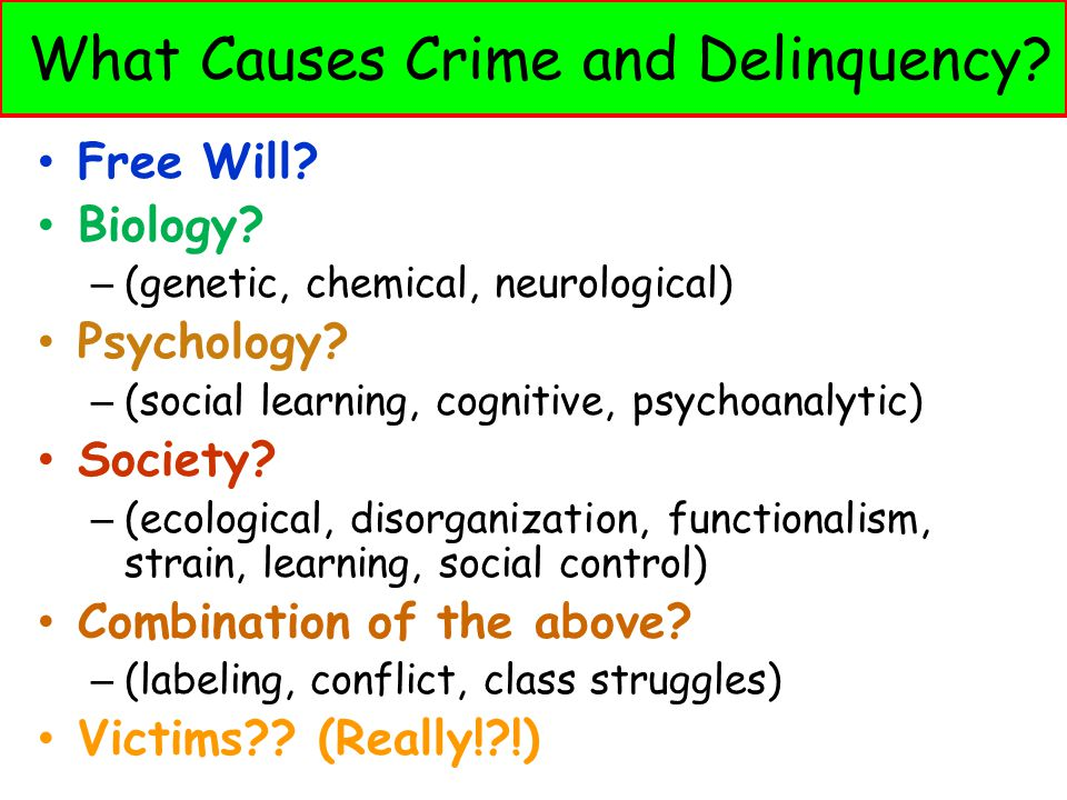 What Causes Crime and Delinquency