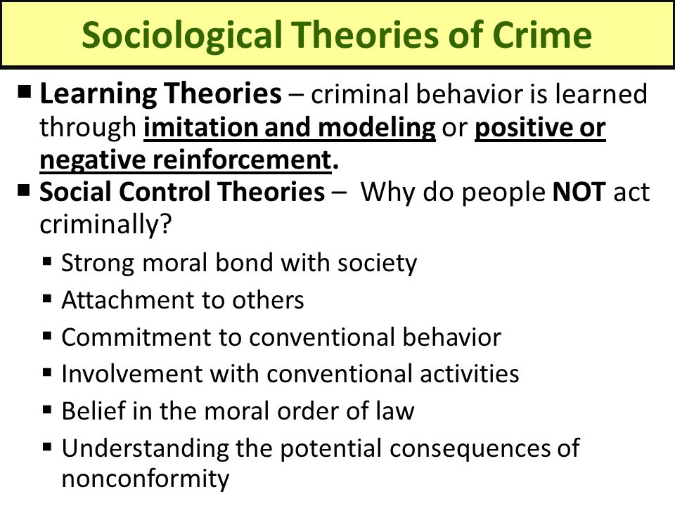 theories on juvenile crime Read chapter patterns and trends in juvenile crime and the national academies press although there are theories about the reasons for the.