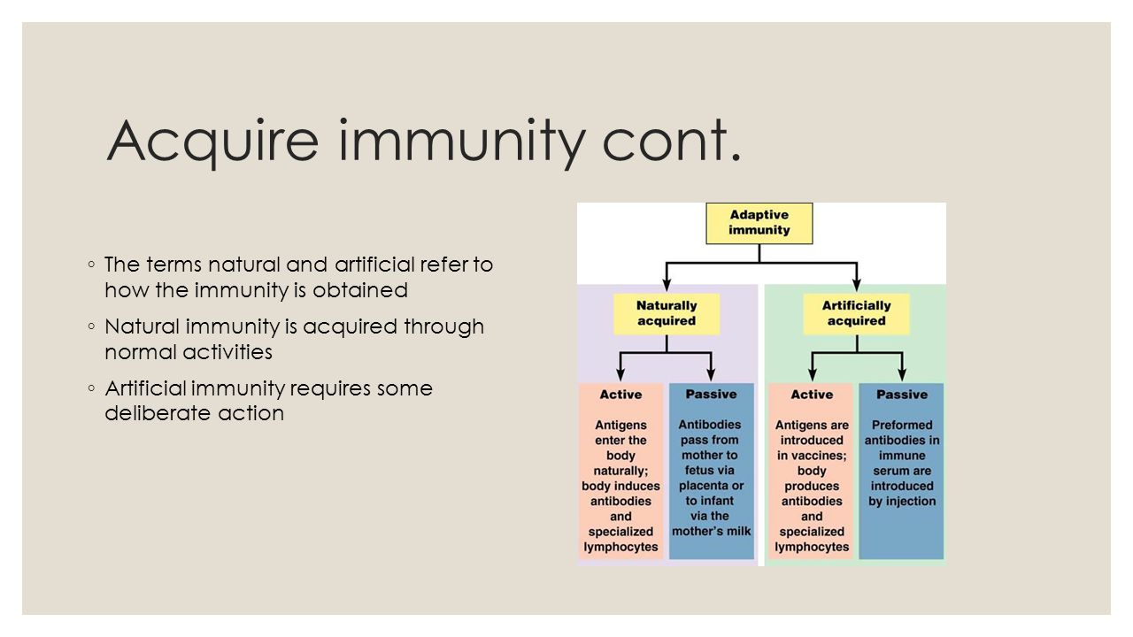 Acquire immunity cont. The terms natural and artificial refer to how the immunity is obtained.