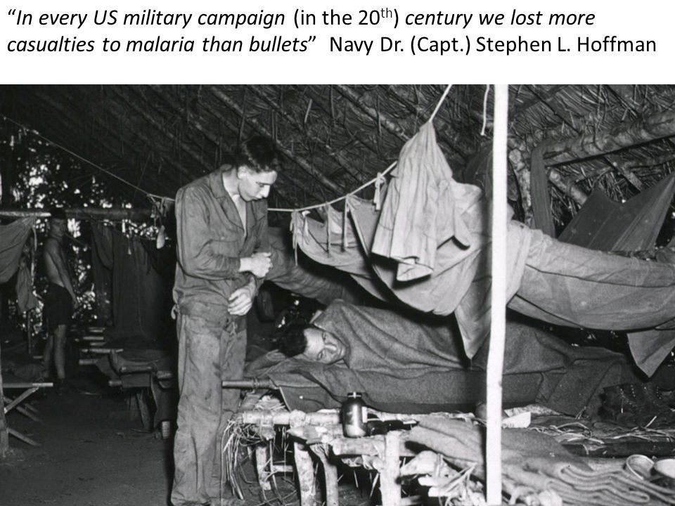 In every US military campaign (in the 20th) century we lost more casualties to malaria than bullets Navy Dr.