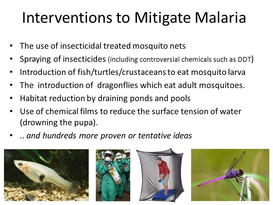 Interventions to Mitigate Malaria