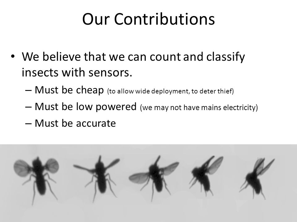 Our Contributions We believe that we can count and classify insects with sensors. Must be cheap (to allow wide deployment, to deter thief)