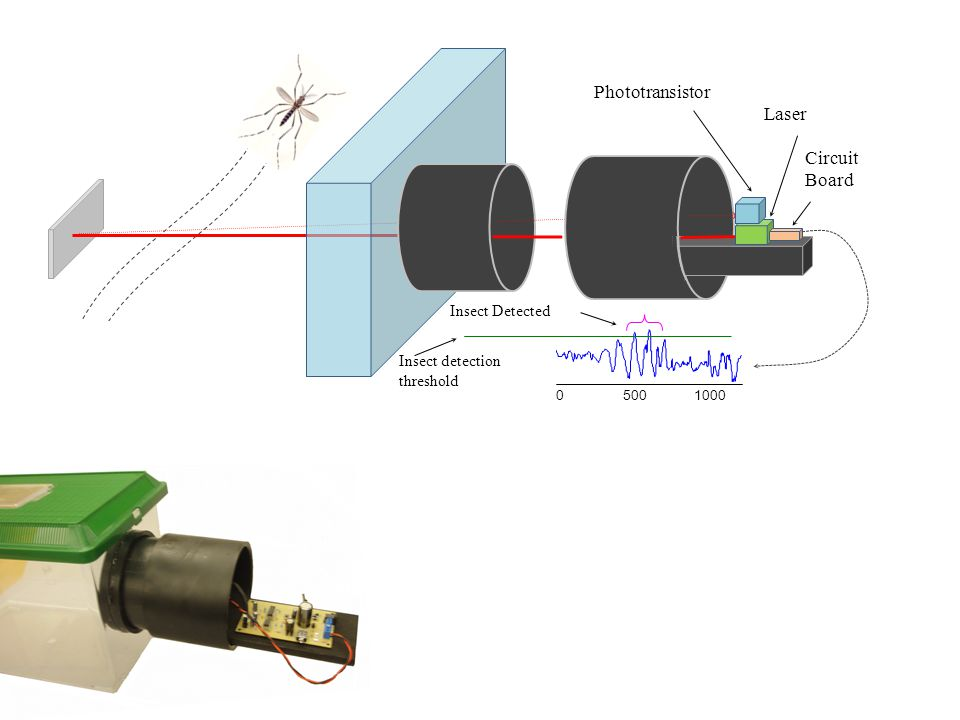 Phototransistor Laser Circuit Board Insect Detected