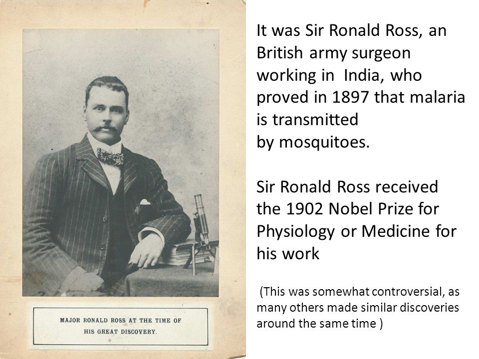 It was Sir Ronald Ross, an British army surgeon working in India, who proved in 1897 that malaria is transmitted by mosquitoes.
