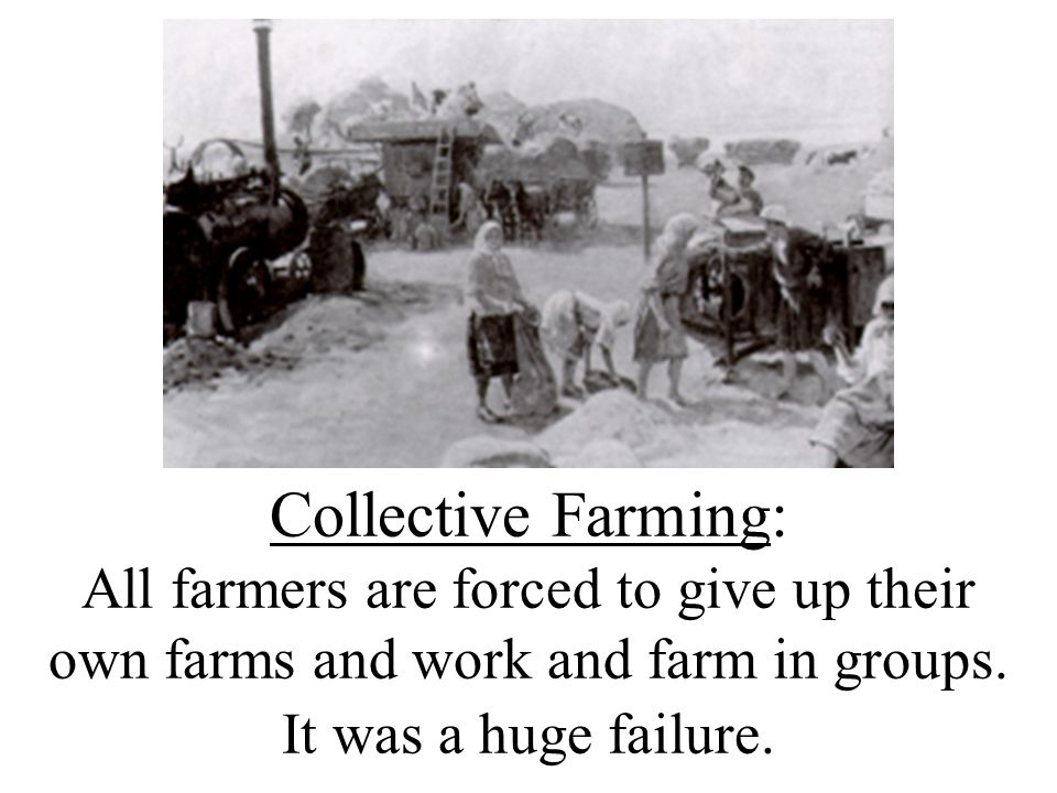 Collective Farming: All farmers are forced to give up their own farms and work and farm in groups.