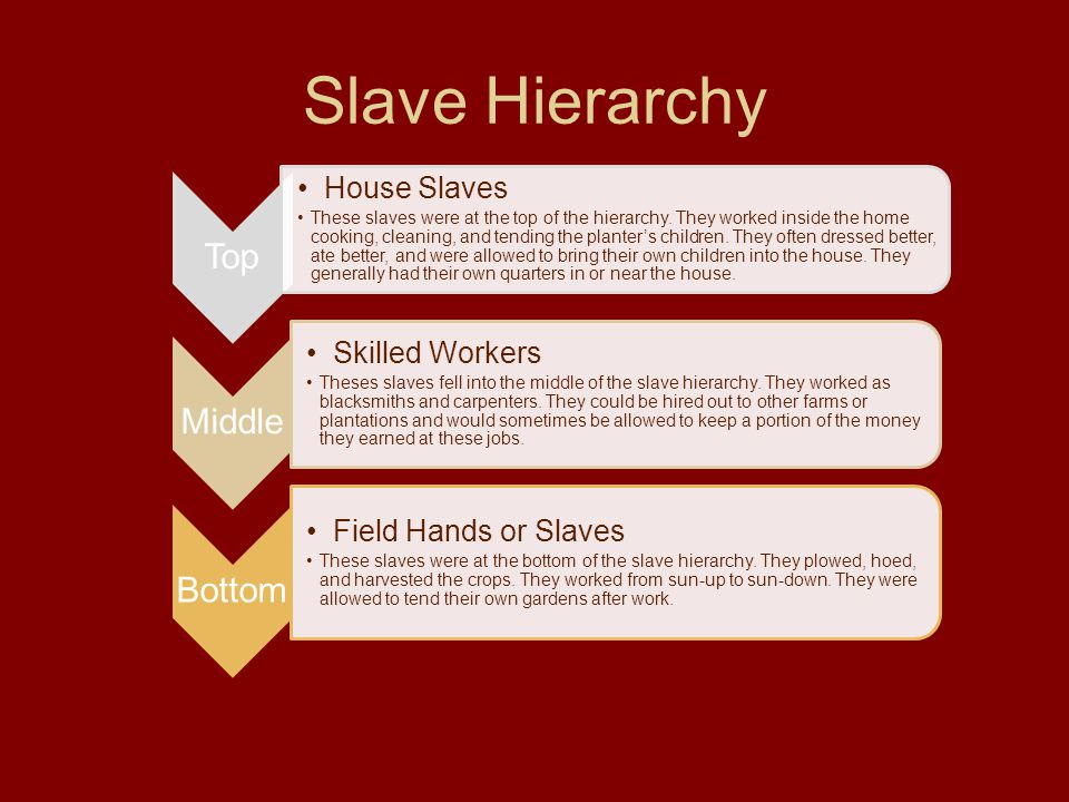Slave Hierarchy Top Middle Bottom House Slaves Skilled Workers
