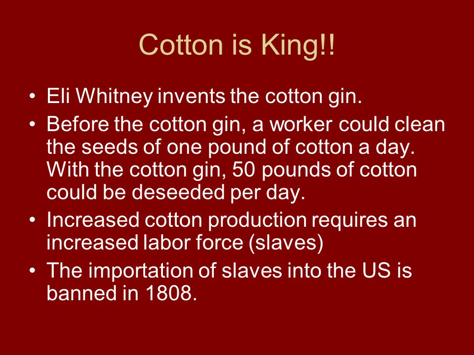Cotton is King!! Eli Whitney invents the cotton gin.